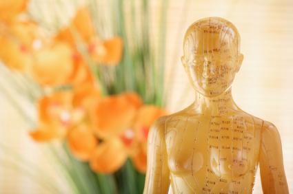 female-acupuncture-model